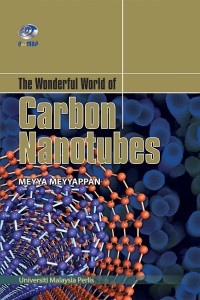 The Wonderful World of Carbon Nanotubes